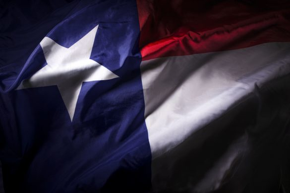 The Texas state flag waving in shadow